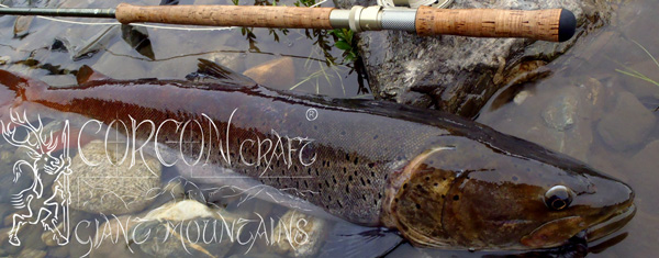 Custom  THOMAS & THOMAS  Rods for specialized Fly Fishing in Mongolia